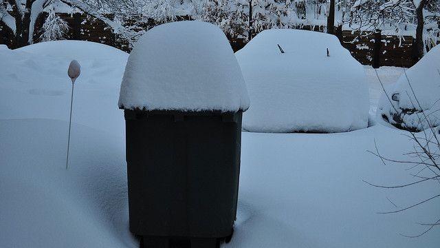 Kanta u snijegu